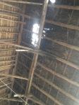 211.cornagroenveld-deverwondering-nieuwe-werkplek-verbouwing-wieringen-boerderij-yoga-retraite-opstellingen-verdiepingsdag-meditatie-stilte-rust