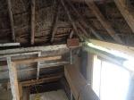 364.cornagroenveld-deverwondering-nieuwe-werkplek-verbouwing-wieringen-boerderij-yoga-retraite-opstellingen-verdiepingsdag-meditatie-stilte-rust.jpgjpg