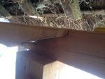 366.cornagroenveld-deverwondering-nieuwe-werkplek-verbouwing-wieringen-boerderij-yoga-retraite-opstellingen-verdiepingsdag-meditatie-stilte-rust.jpgjpg