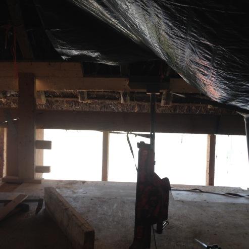 368.cornagroenveld-deverwondering-nieuwe-werkplek-verbouwing-wieringen-boerderij-yoga-retraite-opstellingen-verdiepingsdag-meditatie-stilte-rust.jpgjpg
