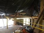 369.cornagroenveld-deverwondering-nieuwe-werkplek-verbouwing-wieringen-boerderij-yoga-retraite-opstellingen-verdiepingsdag-meditatie-stilte-rust.jpgjpg