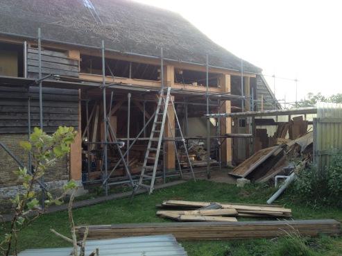 376.cornagroenveld-deverwondering-nieuwe-werkplek-verbouwing-wieringen-boerderij-yoga-retraite-opstellingen-verdiepingsdag-meditatie-stilte-rust.jpgjpg