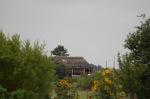 383.cornagroenveld-deverwondering-nieuwe-werkplek-verbouwing-wieringen-boerderij-yoga-retraite-opstellingen-verdiepingsdag-meditatie-stilte-rust.jpgjpg