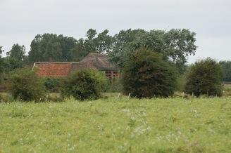 384.cornagroenveld-deverwondering-nieuwe-werkplek-verbouwing-wieringen-boerderij-yoga-retraite-opstellingen-verdiepingsdag-meditatie-stilte-rust.jpgjpg