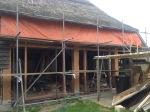 396.cornagroenveld-deverwondering-nieuwe-werkplek-verbouwing-wieringen-boerderij-yoga-retraite-opstellingen-verdiepingsdag-meditatie-stilte-rust.jpgjpg