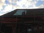 466-cornagroenveld-deverwondering-nieuwe-werkplek-verbouwing-wieringen-boerderij-yoga-retraite-opstellingen-verdiepingsdag-meditatie-stilte-rust