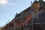 475-cornagroenveld-deverwondering-nieuwe-werkplek-verbouwing-wieringen-boerderij-yoga-retraite-opstellingen-verdiepingsdag-meditatie-stilte-rust